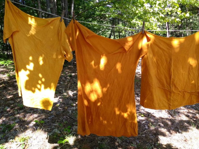 Natural Dye Notes – Onion Skins, Cochineal and Logwood